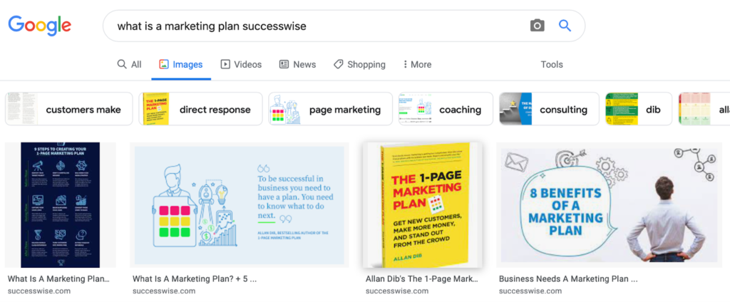 Example of Successwise blog images indexed by Google